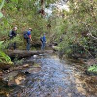 Crossing Bedford Creek | Michael Buggy