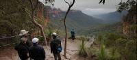 Stop to admire the beauty of the Blue Mountains on a guided walk | Stewart Hayes