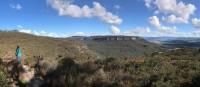 Mt Blackheath viewed from Centennial Glen Walking Track   Andy Mein