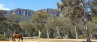 Towering escarpments on the first day of the Six Foot Track | Linda Murden