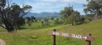 Enjoy the open country and views on the Six Foot Track | Linda Murden