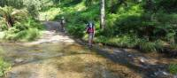 Trying to keep your feet dry on the Six Foot Track | Linda Murden