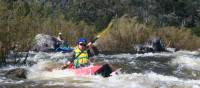 Rafting the iconic Snowy River in New South Wales
