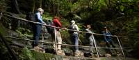 Explore the best of the Blue Mountains | Jannice Banks