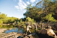 Trekkers follow Barramundi Creek in Kakadu |  <i>Aran Price</i>