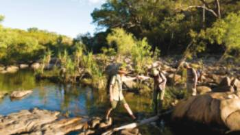 Trekkers follow Barramundi Creek in Kakadu | Aran Price