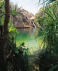 Barramundi Falls Kakadu National Park |  <i>David Tatnell</i>