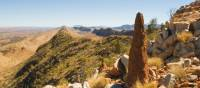 Counts Point is one of the highlights of the Larapinta Trail | Aran Price
