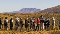 A group trekkers admiring the view along the Larapinta Trail |  <i>Peter Walton</i>