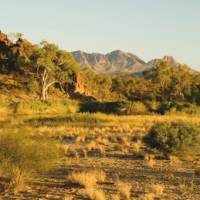 The summit of Mount Sonder drews us on to the end of the Larapinta Trail | Aran Price