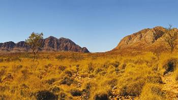 The sheer beauty of the Western Macdonald Ranges can be experienced on our Larapinta trips | Peter Walton