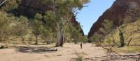 Trekkers make their way towards Simpson's Gap on the Larapinta Trail | Larissa Duncombe