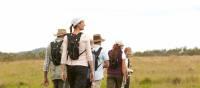 Walking the grasslands on the Scenic Rim Walk