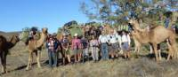 Camel trekkers in the Flinders