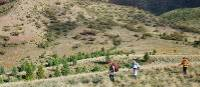 Trekkers on the exclusive Arkaba walk