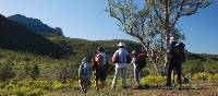 Walkers on the Heysen Trail in South Australia |  <i>Chris Buykx</i>