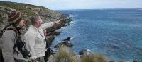 Marine wildlife watching on Kangaroo Island | Mark Bennic