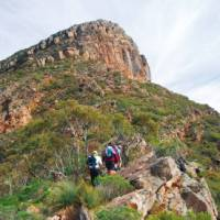 St Marys Peak, Heysen Trail, South Australia   Chris Buykx