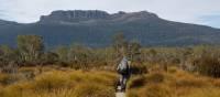 Walking on the Overland Track   Linda Murden
