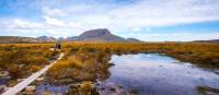 Trekkers walking along the boardwalk on the Overland Track | Great Walks of Australia