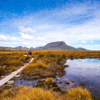 Trekkers walking along the boardwalk on the Overland Track   Great Walks of Australia
