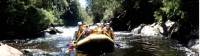 White water rafting down the vibrant Franklin River |  <i>Michele Eckersley</i>