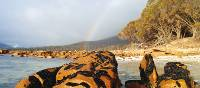The many colours of Freycinet National Park | Steve Trudgeon