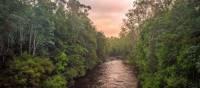 The Pristine Tasmanian Wilderness World Heritage Area. | Glenn Walker