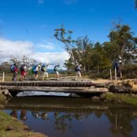 Explore the stunning Maria Island on this guided walk | Tourism Tasmania and Rob Burnett