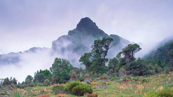 Mount Anne surrounded by mist | Tourism Tasmania & Popp Hackner Photography