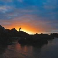 Photographic opportunities abound in Tasmania's spectacular Tarkine region | Peter Walton