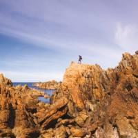 The Tarkine coast of Tasmania's west   Peter Walton