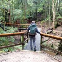Crossing rivers in the rainforest | Holly-Mae Bedford