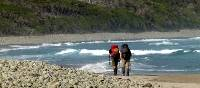 The South Coast Track is one of the Great Walks of Tasmania   Steve Trudgeon
