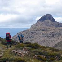 Trekking toward the remote dolerite peak of Mt Anne   Chris Buykx