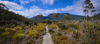 Trekking the spectacular Overland Track | Mark Whitelock