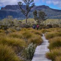 Trekking the spectacular Overland Track  | Mark Whitelock