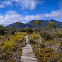 The Overland Track, Tasmania's most famous walk | Mark Whitelock
