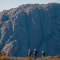 Trekkers in the Walls of Jerusalem National Park walking towards Mt Jerusalem   Don Fuchs