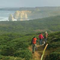 Final stretch of the trail with the Twelve Apostles sight | Caroline Mongrain