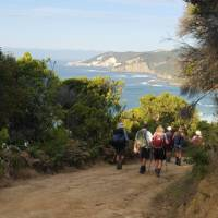 Experience the breathtaking coastal scenery on the Twelve Apostles Walk | Linda Murden