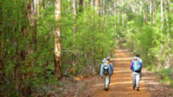 Walkers on the Bibbulmun Track