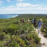 Explore the Walpole to Denmark section of the Bibbulmun Track