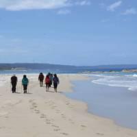 Stunning beach walk on the Bibbulmun Track Albany to Denmark section