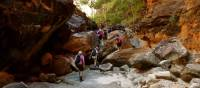 Exploring remote gorges of the Bungle Bungles | Holly Van De Beek