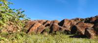 Explore the spectacular beehive domes of the Bungle Bungles | Holly Van De Beek