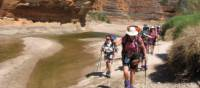 The Wild Women on Top group trekking in to the Bungles | Di Westaway