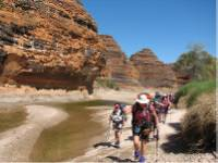 The Wild Women on Top group trekking in to the Bungles |  <i>Di Westaway</i>