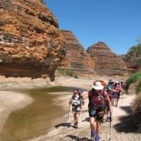 The Wild Women on Top group trekking in to the Bungles | Di Westaway