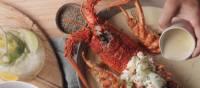 Tasmanian lobster with truffle sauce creme | Peter Kuruvita